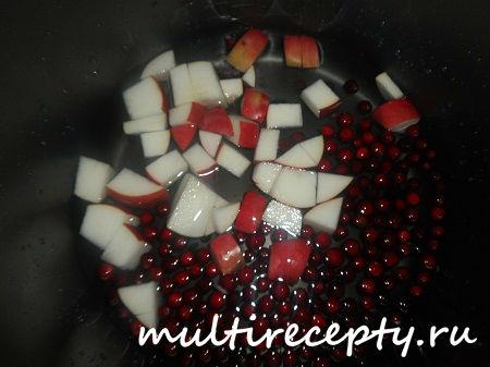 Яблоко и клюква в мультиварке